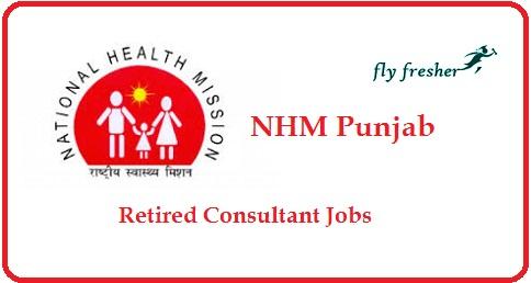 NHM-Punjab-Consultant-Jobs